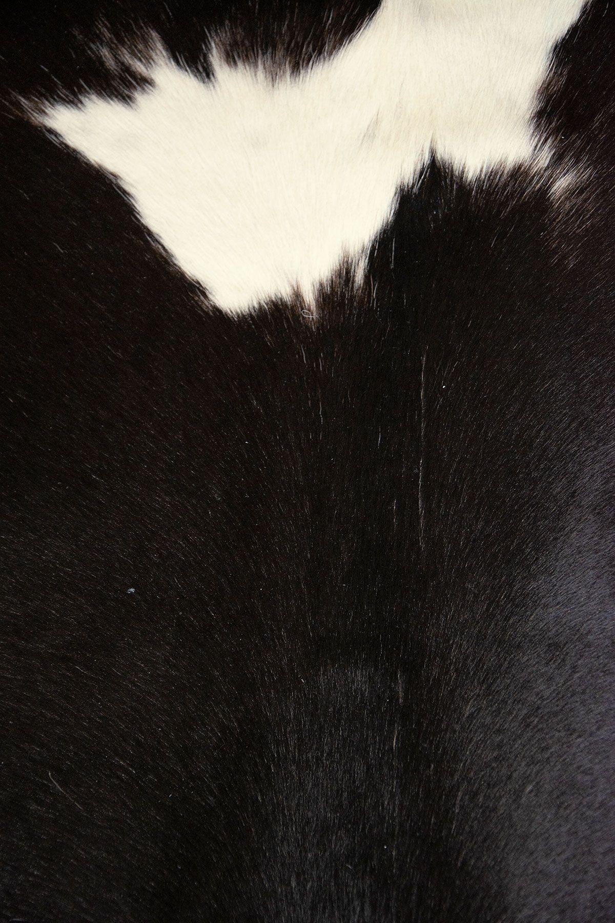 Pegia Genuine Cowhide Leather Carpet FST084 Natural